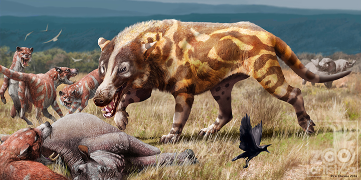 Adrewsarcus mongoliensis