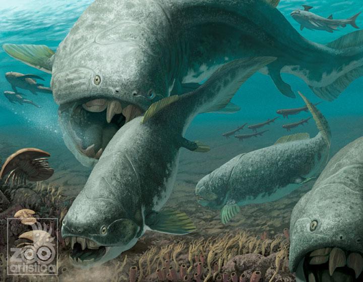 Dunkleousteus terrelli