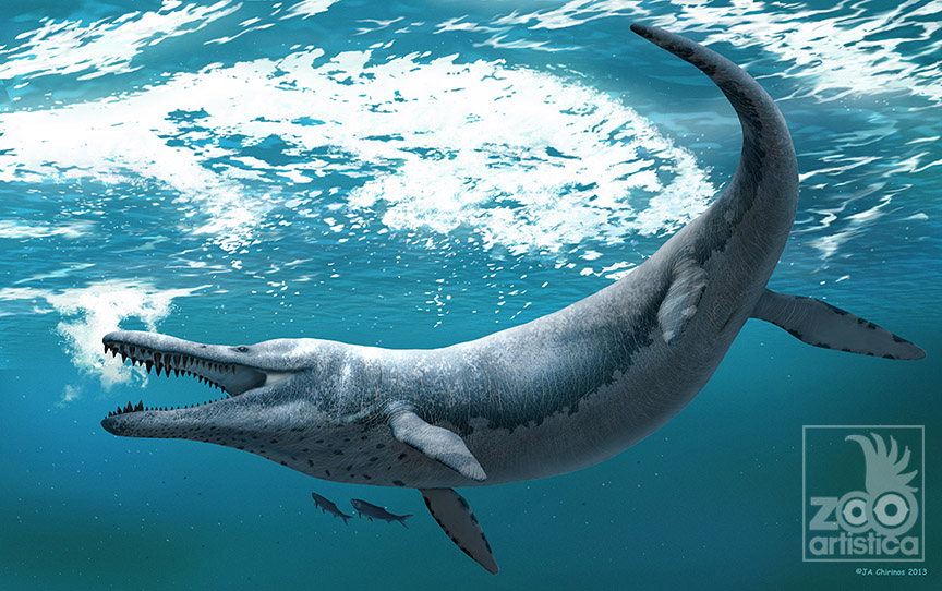 Kronosaurus queenslandicus