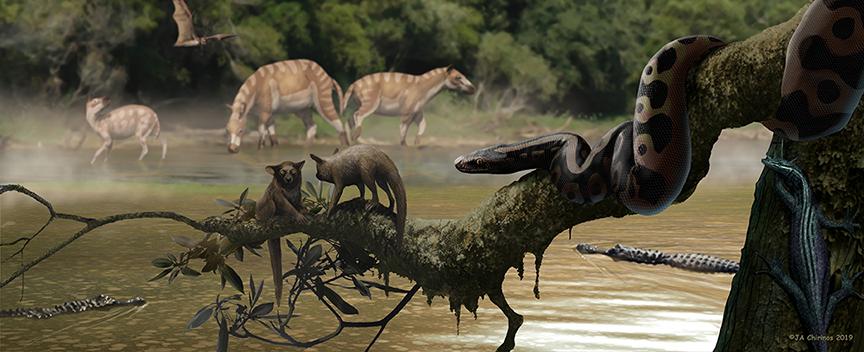 Palaeopython