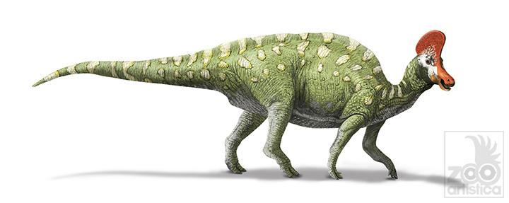 Coritosaurus casuarius