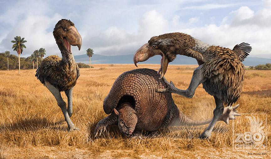 Phorusrhacids fighting a Doedicurus